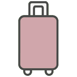 airplane checked luggage